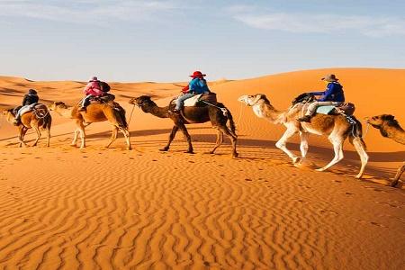 organized-morocco